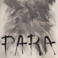 para on grey paper